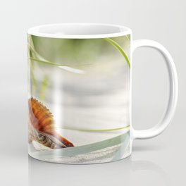 big shell in the sand, in the green of the beach-oats Coffee Mug
