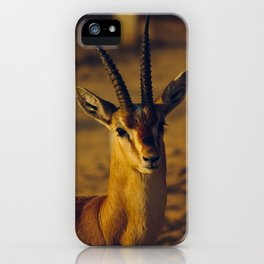 Oh Deer iPhone Case