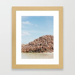 Conches. Framed Art Print
