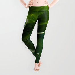 Green Algae and Water Leggings