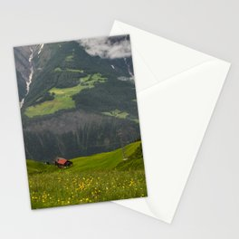 Switzerland Riederalp Photograph, Spring Flowers on the Swiss Alps Stationery Cards