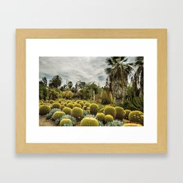 Succulents at Huntington Garden No. 1 Framed Art Print