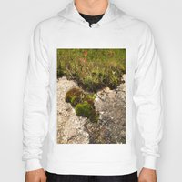 oasis Hoodies featuring A Hill Country Oasis... by TexasArt