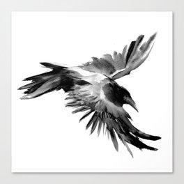 Flying Raven Canvas Print