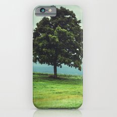 Tree in Field Slim Case iPhone 6
