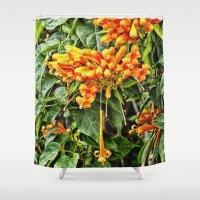 trumpet Shower Curtains featuring Spectacular orange trumpet flower by Wendy Townrow