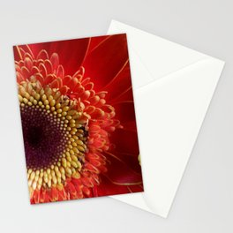 Colors of Gerberas Stationery Cards