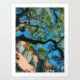 The Most Beautiful College Campus Art Print