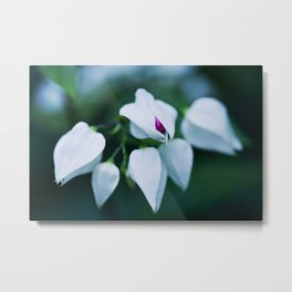 Macro photograph of a the first bud opening. Metal Print