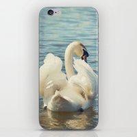 swan iPhone & iPod Skins featuring Swan by Svetlana Sewell