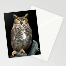 Superb Owl Sunday Stationery Cards