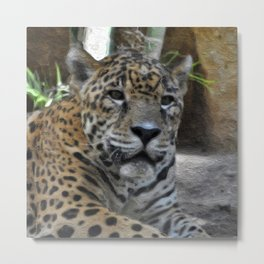Painted Leopard Metal Print