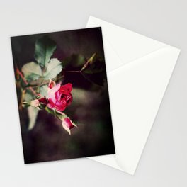 last pink color of this year  Stationery Cards
