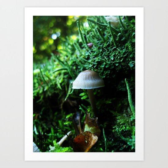 Magical Nature Art Print