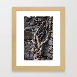 Put down roots in unusual places Framed Art Print