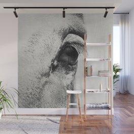 HorSe (V2 grey) Wall Mural
