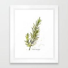 Rosemary Framed Art Print