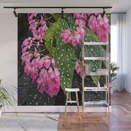 ANGEL WING PINK  BEGONIA FLOWERS Wall Mural