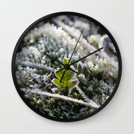 Frosty Fern leaf | Winter in The Netherlands | Fine art nature photography Wall Clock