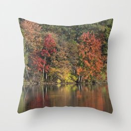 Reflections d'Automne Throw Pillow