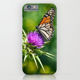monarch with mustard iPhone Case