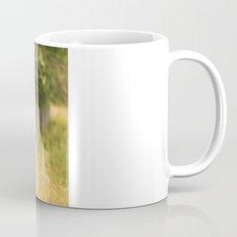 Field fence Coffee Mug