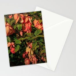 Manchester Roses Stationery Cards