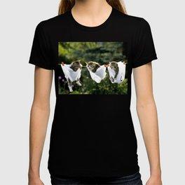 Kittens in underwear on clothesline T-shirt