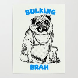 It's ok brah, I'm bulking Poster