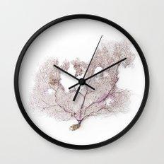 CORAL FAN Wall Clock