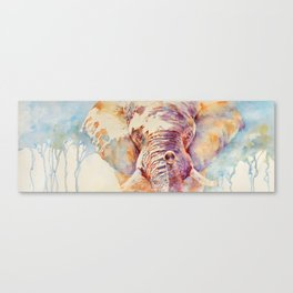 African Elephant _ The Governor Canvas Print