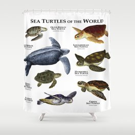 Sea Turtles of the World Shower Curtain