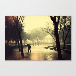 Rusty Rain Canvas Print