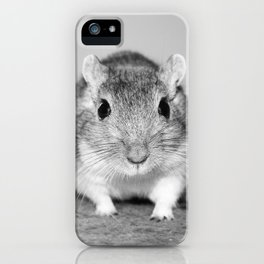 Gerbil , Black and white iPhone Case