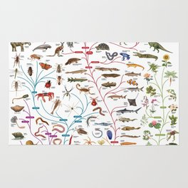 Darwinian Evolution The Tree of Life Rug