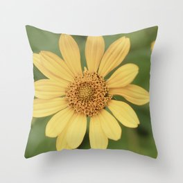 Beautiful Yellow Vintage Flower Throw Pillow