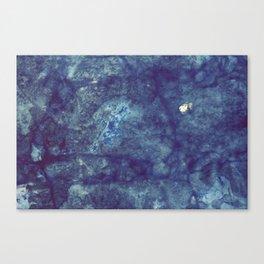 ufer - eins Canvas Print