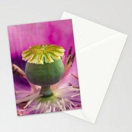 Poppy flower head Stationery Cards