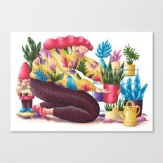 Houseplants Canvas Print