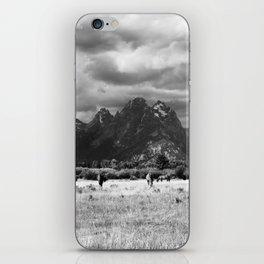 Horse and Grand Teton (Black and White) iPhone Skin