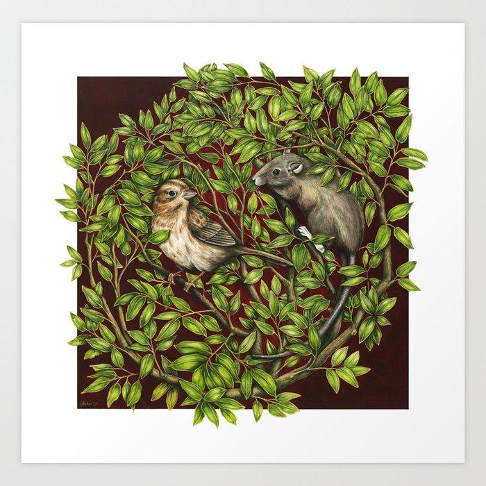 refuge / sparrow and rat Art Print