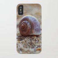 seashell iPhone & iPod Cases featuring Seashell by Ekaterina La