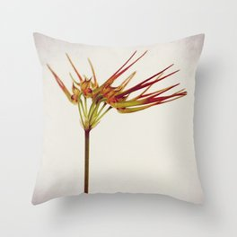 Into Orchid Throw Pillow