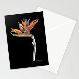 Bird of Paradise 01b Botanical Flower Stationery Cards