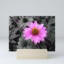 The Stand Out Daisy Mini Art Print