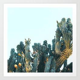 Teal Cactus Art Print