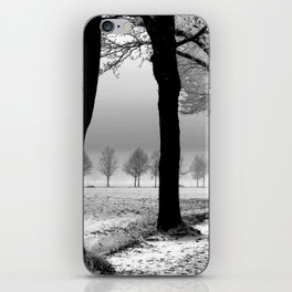 Snowy Day in the Country iPhone Skin