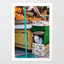Le Chat du Marché Art Print
