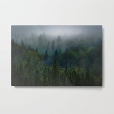 I dream in evergreen Metal Print