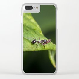 Planning for Winter Clear iPhone Case